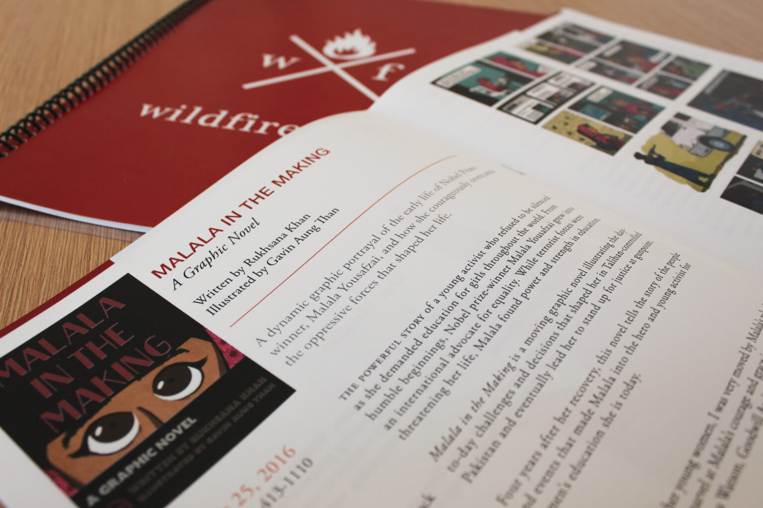 Wildfire Press project materials – Malala in the Making tip sheet
