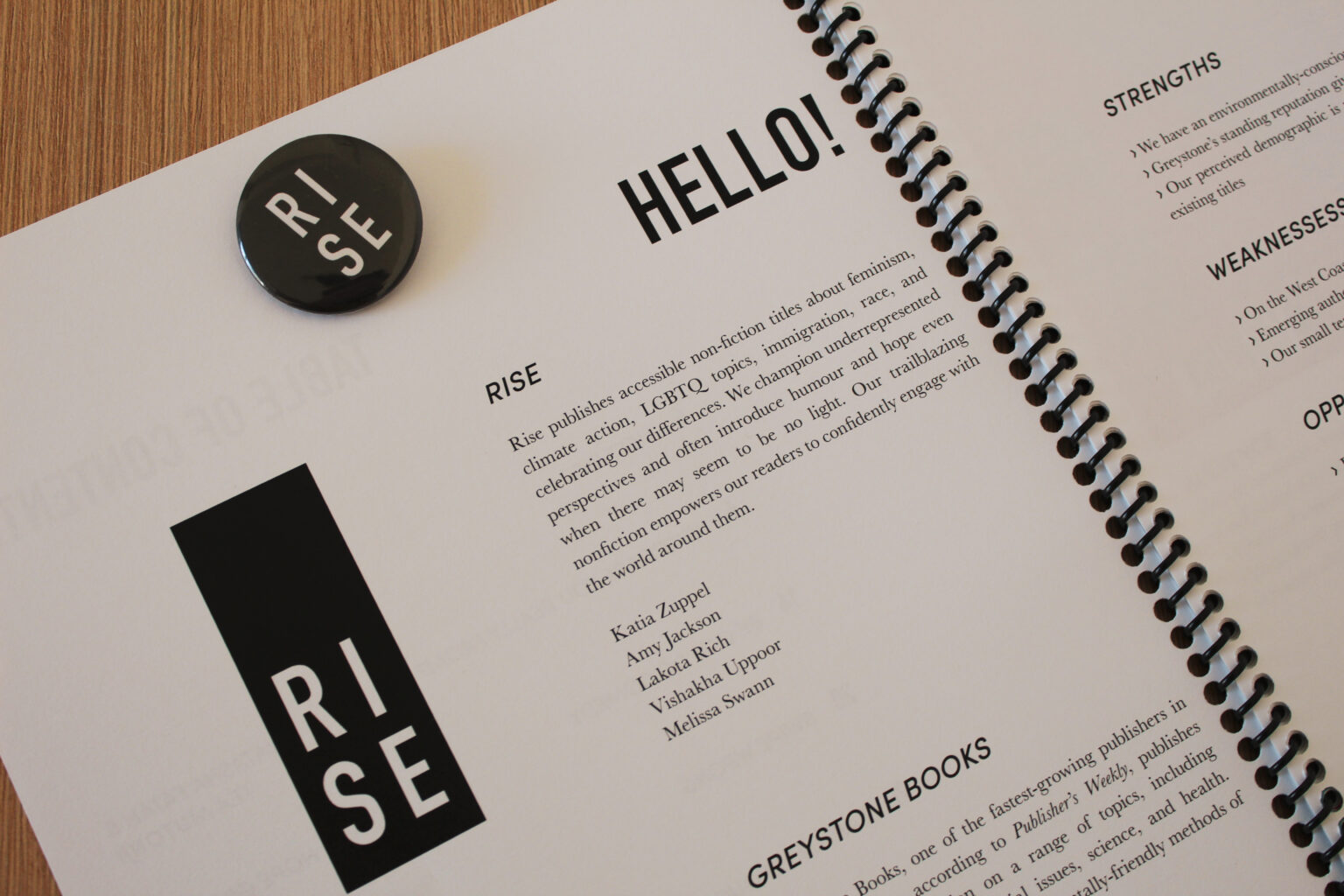 RISE project materials – mission statement page and button